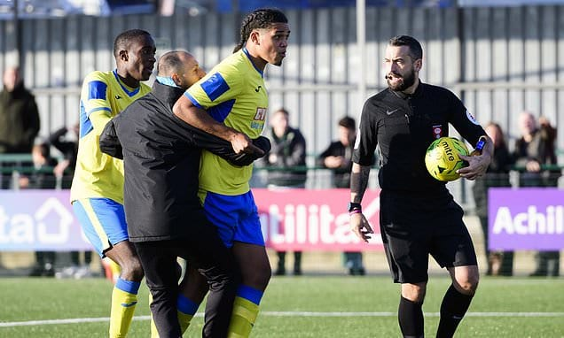 Haringey players left disgusted after alleged racist abuse leads to abandonment of FA Cup clash | Daily Mail Online