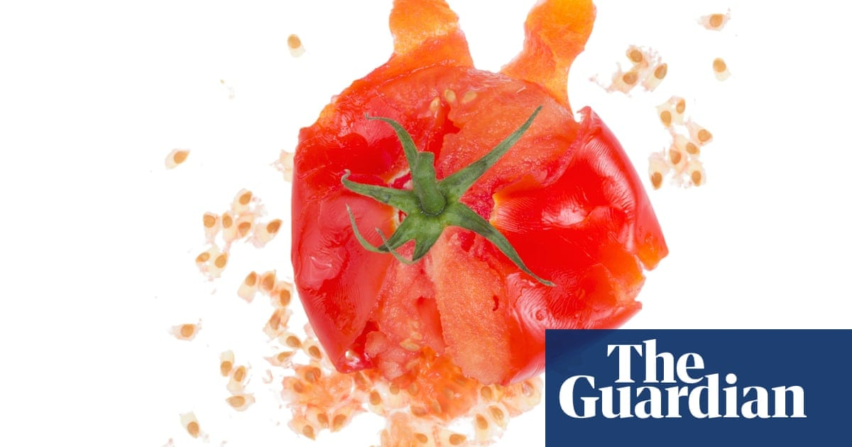 Why do people hate vegans? | Life and style | The Guardian
