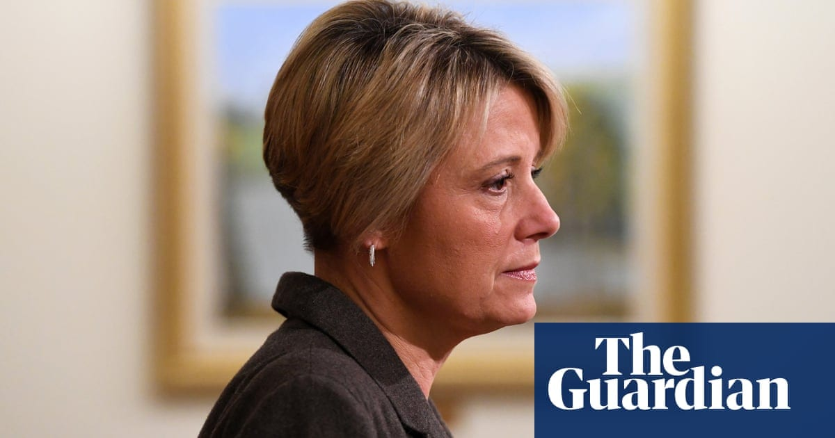 'She made me brave': Kristina Keneally demands paid leave for parents of stillborn babies | Life and style | The Guardian