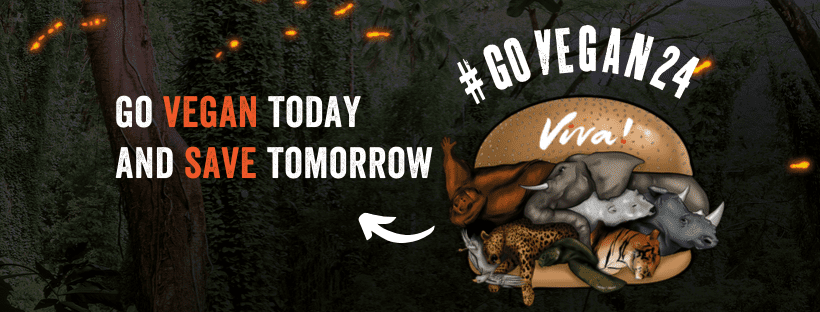 Celebrities are asking Brits to go vegan for 24 hours on World Vegan Day