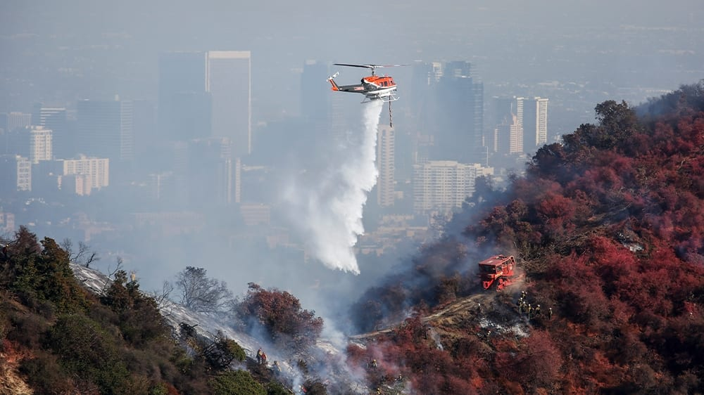 Residents, stars forced to run away as The golden state burns|News|Al Jazeera