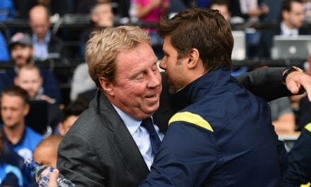 Spurs sack Mauricio Pochettino: Harry Redknapp blames 'relegation form' as Champions League 'disaster' looms