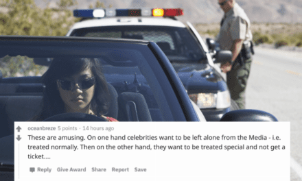 12 police officers tell tales of the moments they pulled over celebrities.