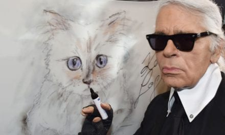 5 Celebrities Who Are Next-Level Cat People