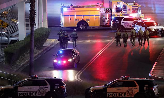 Shooting at Las Vegas Strip mall leaves several individuals harmed|Daily Mail Online