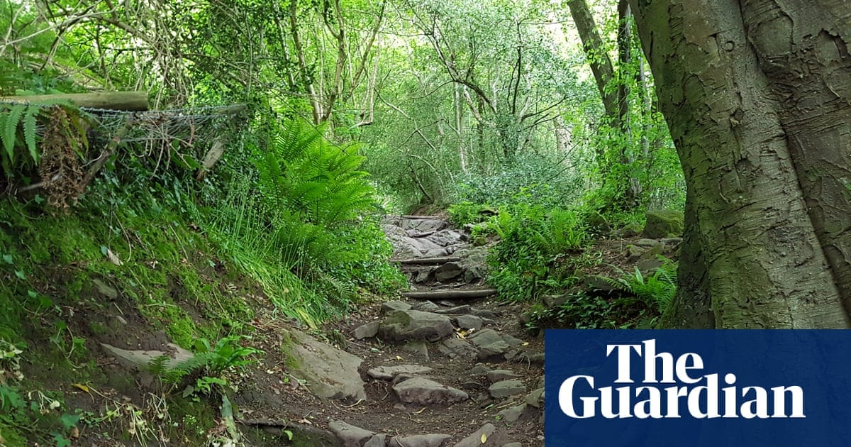 Walkers urged to assist in saving historical walkways prior to 2026 target date|Life and design|The Guardian