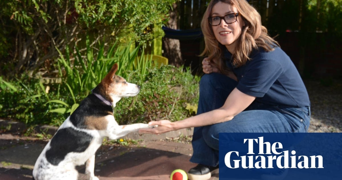 Dogs endure emotional difficulties in puberty like humans, says study | Life and style | The Guardian