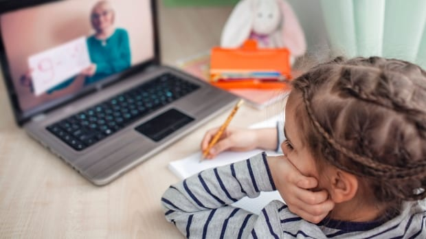 Ontario mandates minimum of 225 minutes/day for 'Zoom-style' classes throughout on the internet learning|CTV Information