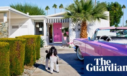 Doggy style: homes of the pampered pooches of Palm Springs – in pictures | Art and design | The Guardian