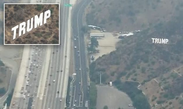 Huge Hollywood-style Trump sign is erected beside LA freeway | Daily Mail Online