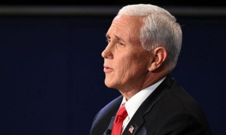 Newt Gingrich urged Trump to 'study' Pence's debating style: 'He wasn't hostile'