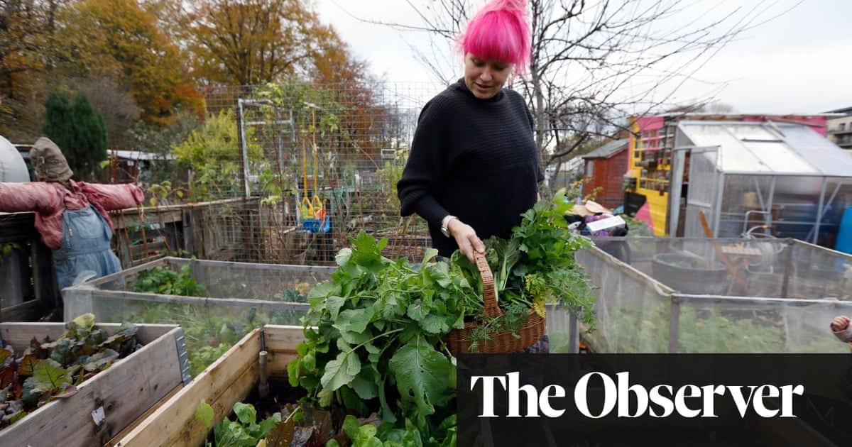 It's official: allotments are good for you – and for your mental health | Life and style | The Guardian