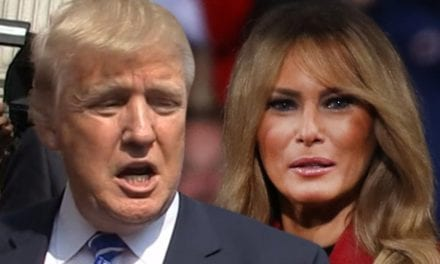 Donald Trump Says 'Elitist Snobs' in Fashion Biz Kept Melania Off Magazine Covers