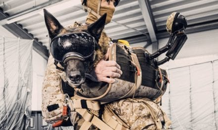This new harness lets military dogs parachute safely and with style | Popular Science