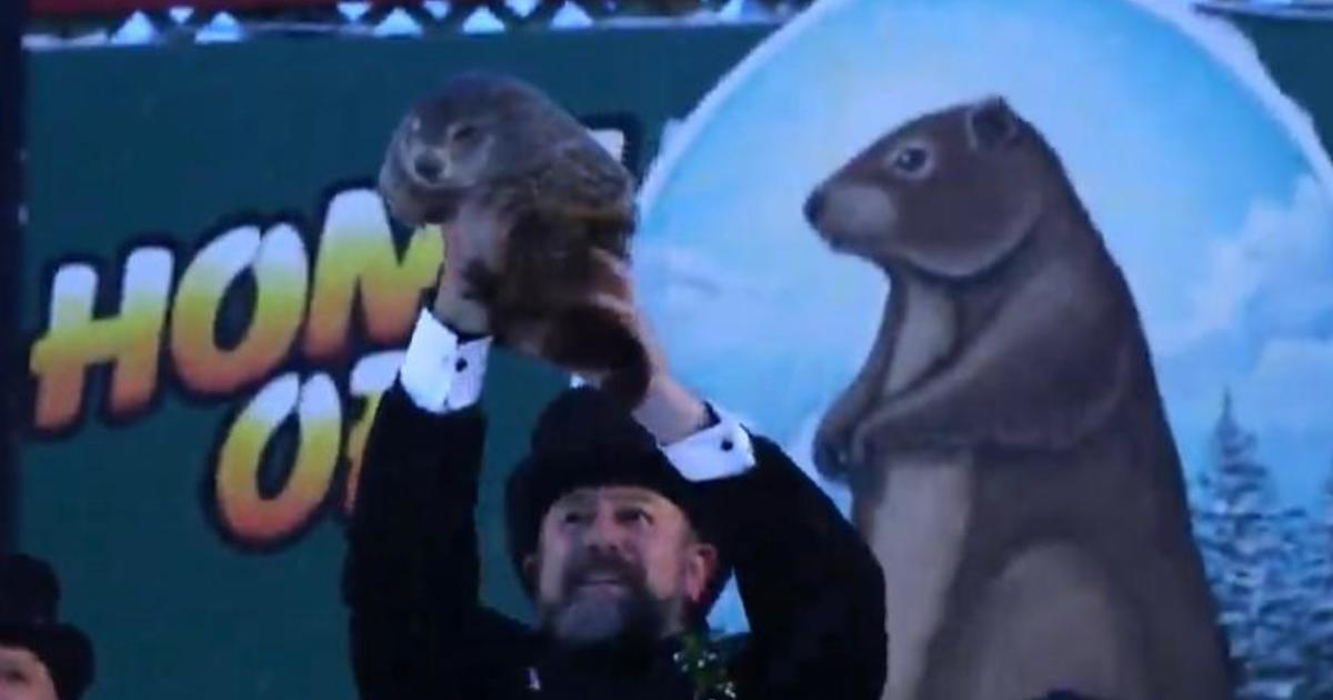 Groundhog Day 2021: Punxsutawney Phil predicts 6 more weeks of winter – CBS News