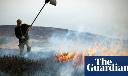 'It has become them and us': the battle to burn England's moorlands | Life and style | The Guardian