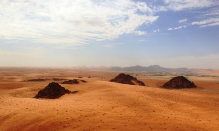 Stone Age humans or their relatives occasionally trekked through a green Arabia | Science News