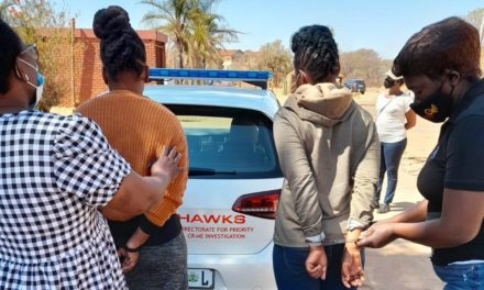 Hawks warned against 'Hollywood-style' arrests | Citypress