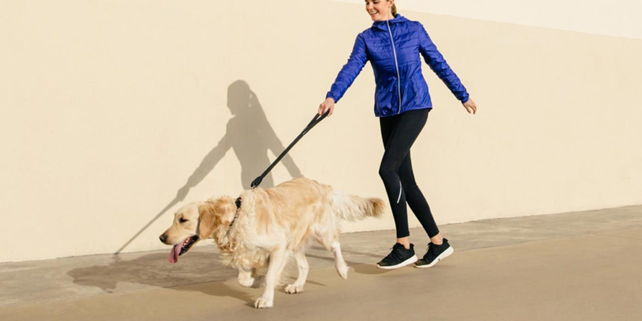 Need workout motivation? Just get a dog, according to research