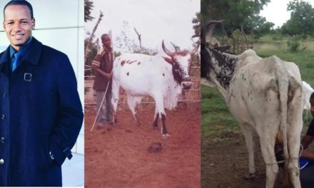 Throwback photos of Journalist Umaru Sanda's cowboy days is a real motivation