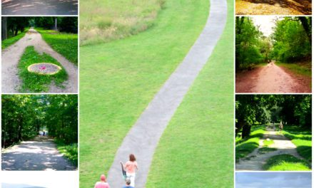 Weekly Photo Challenge: A PATH | Mirth and Motivation